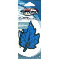 Auto Expressions  New Car Air Freshener